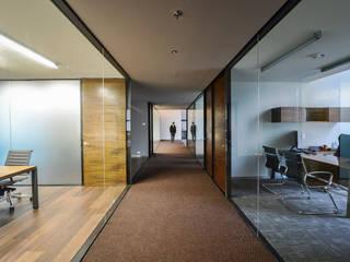 Bureau de style  par pmasceroarquitectura, Moderne