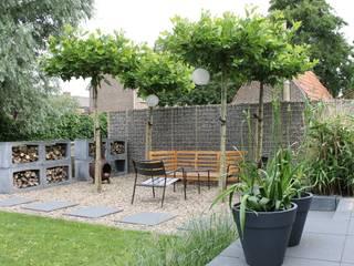Leuke tuin in Friesland: moderne Tuin door Joke Gerritsma Tuinontwerpen