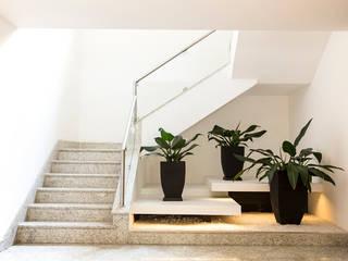 Jardim de Inverno Moderno: Corredores e halls de entrada  por Cecília Mesquita Arquitetura