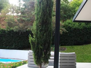 pergola bioclimatique pour la rénovation d'une terrasse: Jardin de style  par Koya Architecture Intérieure, Moderne