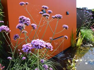 Taman oleh KLAP tuin- en landschapsarchitectuur, Modern