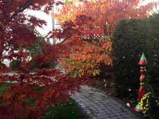 Сад by dirlenbach - garten mit stil, Класичний
