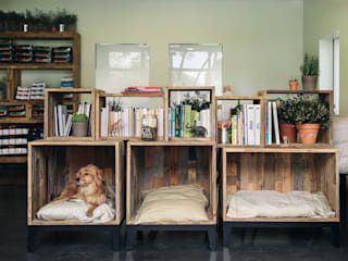 PET HOSPITAL by Arkstudio Rustic