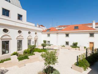 Mesquitela por All you need is Portugal Moderno