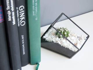 Terrario Hexaedro:  de estilo  de ZetaGlass
