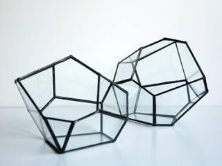 Terrario Roca:  de estilo  de ZetaGlass