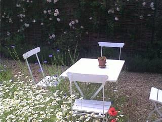 Garden by GreenlinesDesign Ltd,