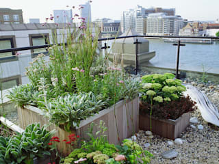 Executive Roof Terrace on River Thames Modern office buildings by GreenlinesDesign Ltd Modern