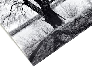 Авторский постер на бумаге:  в . Автор – Андрей Шевелёв