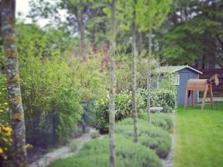 modern Garden by grasgrau - GARTENDESIGN