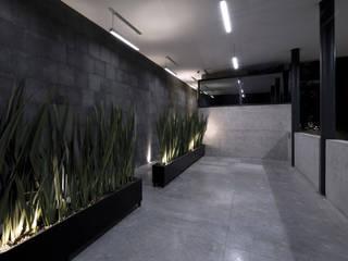 Pasillos, vestíbulos y escaleras modernos de Taller Plan A Moderno