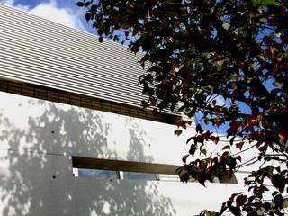TWO TONE | 高級注文住宅 モダンな 家 の Mアーキテクツ|高級邸宅 豪邸 注文住宅 別荘建築 LUXURY HOUSES | M-architects モダン
