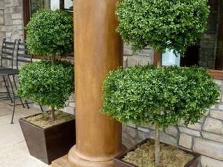 Sunwing Industries Ltd Maisons modernes Bois Vert