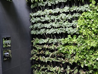 Virgin Active - Menlyn Maine by Modiwall Vertical Gardens Tropical