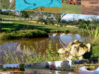 Estanque Naturalizado 2012: Jardines de estilo  de GreenerLand. Arquitectura Paisajista y Tematización