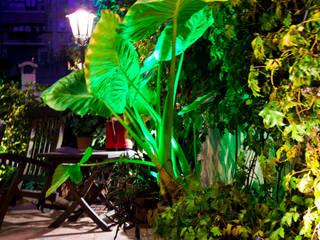 Jardines de estilo moderno de Barnazen Moderno