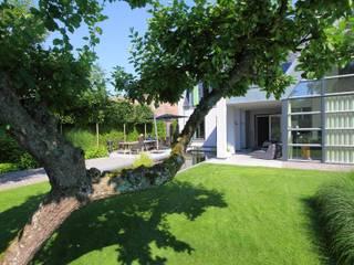 Moderner Garten von Stoop Tuinen Modern