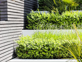 HOUSE FRONTAGE DESIGN by Concept Landscape Architects