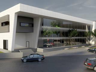 Polyone Plastik Hammadde Fabrikası Modern Evler Pronil Modern