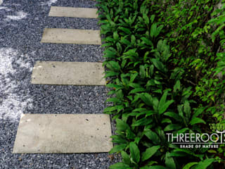 от Threeroots Group Co.,Ltd.