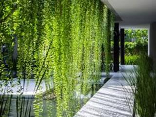 designer  paysagiste :  de style  par deco paysage concept Marbella