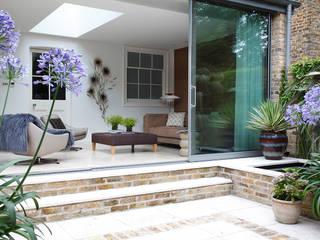 Gardens - London Modern garden by MN Design Modern