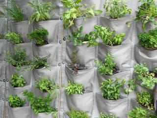 Vertical Veg Panels:   by Vertical Veg (Pty) Ltd,