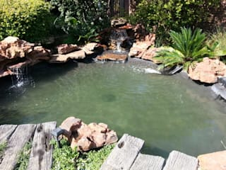 Pond Upgrade – Bryanston - After:  Garden by Isivande fish ponds