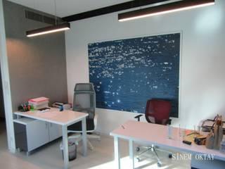 Sinem Oktay – ofis it:  tarz Ofis Alanları
