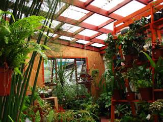 Diseño y Habilitación Local Comercial Jardin Vortice Jardines de estilo rústico de Vortice Design Ltda Rústico