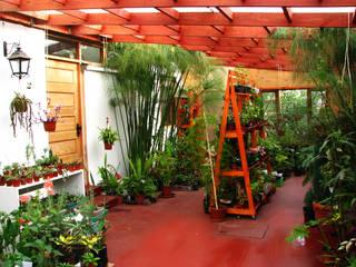 Diseño y Habilitación Local Comercial Jardin Vortice: Jardines de estilo  por Vortice Design Ltda,