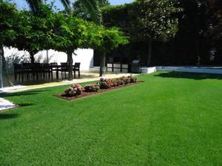 Jardim - Guimarães Jardins modernos por TERRA JARDIM Moderno