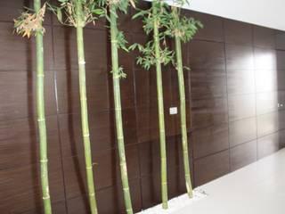 Walls by ESTUDIO 5 DISEÑO Y DECORACIÓN