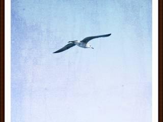 """Leinwand """"Dein Lebensglück ist wie ein Vogel"""" von www.momentaufnehmer.de Klassisch"""