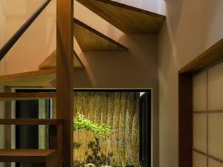 階段と坪庭 夜景 モダンスタイルの 玄関&廊下&階段 の 藤森大作建築設計事務所 モダン 木 木目調