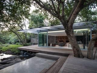 Johannesburg Forrest House: minimalistic Houses by Karel Keuler Architects