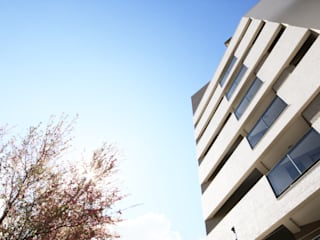 Arqbox Rumah Modern Beton Grey