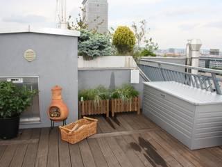Über den Dächern von Wien - Penthausterrasse:  Terrasse von firstlook Homestaging & Redesin