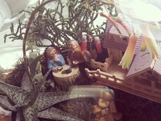 Teraryum Terapi – Sihirli bahçe : modern tarz , Modern