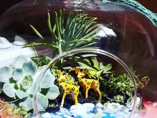 Teraryum Terapi – Mini Bahçe: modern tarz , Modern