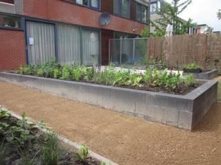 renovatie achtertuin omsloten in groningen zuid:  Tuin door GroenerGras Hoveniers