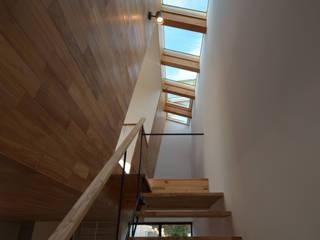本天沼S邸: 遠藤誠建築設計事務所(MAKOTO ENDO ARCHITECTS)が手掛けた廊下 & 玄関です。