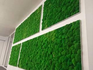 Mur végétal stabilisé. Mousse boule VÉGÉTAL TENDANCE Espaces de bureaux modernes