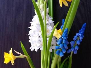 تنفيذ 'Орхидея' школа лепки цветов из полимерных глин