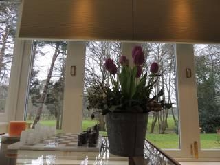 Insulating a north-facing orangery WiSER Modern windows & doors