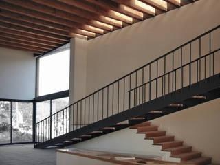 DUMAS Puertas y ventanas de estilo moderno de Rob Dubois · arquitecte Moderno