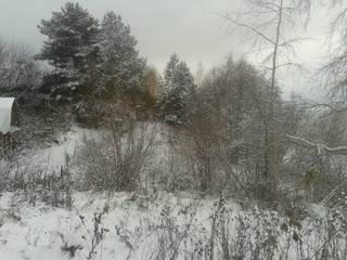Дом на берегу реки Кама: Зимние сады в . Автор – АН 'АСМ'