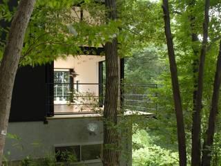 ちっちゃな森の家 モダンな 家 の アーツ&クラフツ建築研究所 モダン