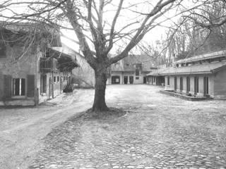 Ferme Beau Cèdre par Bureau de paysage Minimaliste