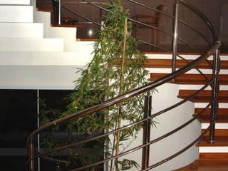 Moderner Flur, Diele & Treppenhaus von BRAVIM ARQUITETURA Modern